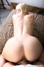 Sweet Cat #88